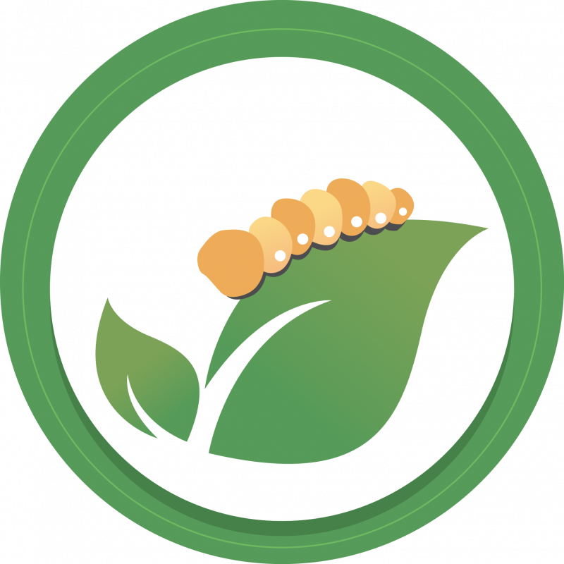 Everything Silkworms' icon logo