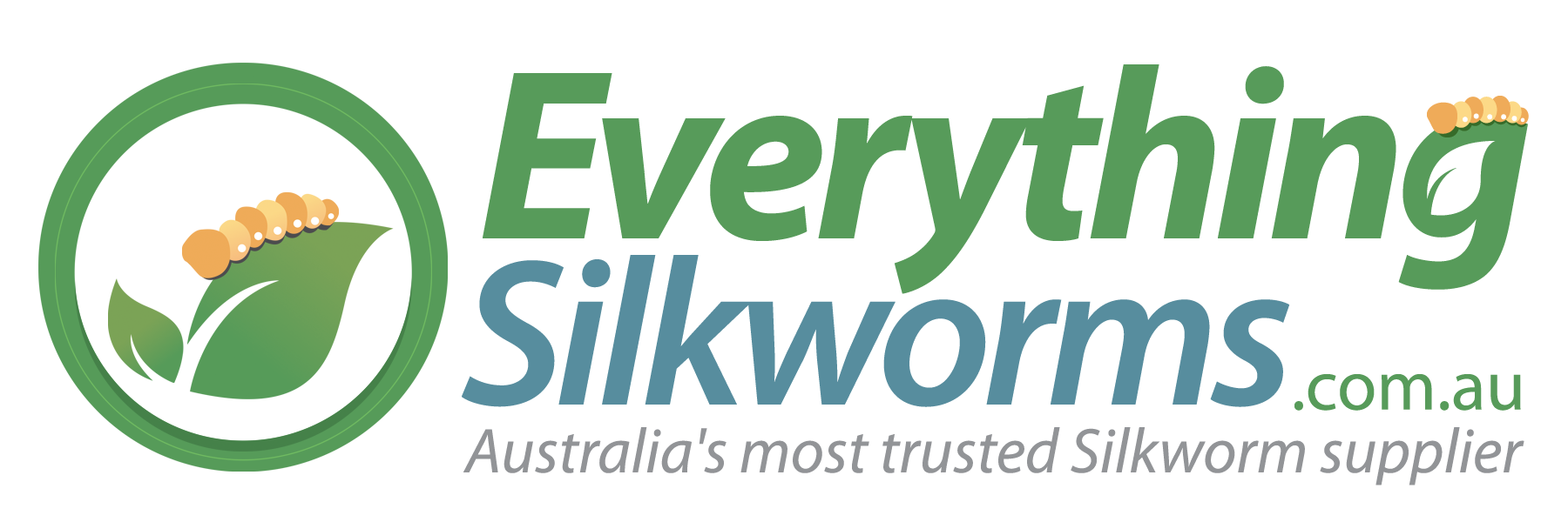 Everything Silkworms