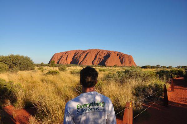 Long-sleeve shirt in front of Uluru
