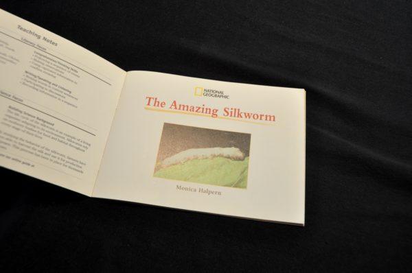 The Amazing Silkworm Book