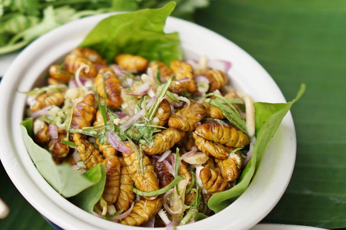 Spicy silkworm salad