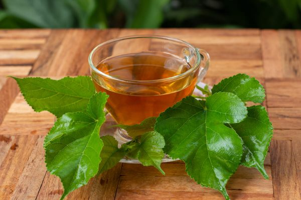 Cup of mulberry leaf tea and fresh mulberry leaves
