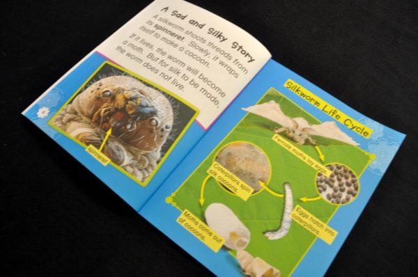 Raising Silkworms Book